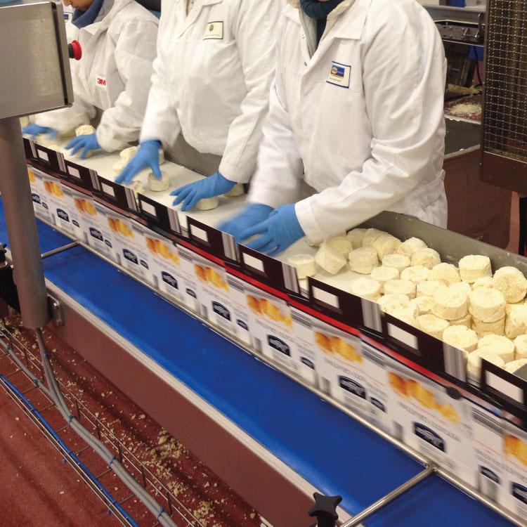 Productieautomatisering aardappelgratin inpakmachine